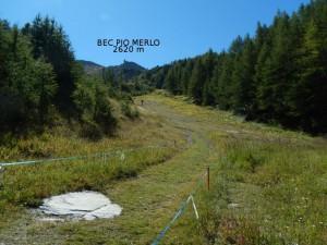Sentiero 17 per il Bec Pio Merlo - Foto di Gian Mario Navillod.