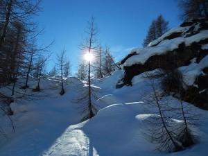 Sentiero per il Bivacco Tzan il 21 dicembre - Foto di Gian Mario Navillod.
