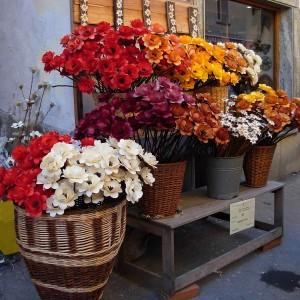 Fiera di Sant'Orso 2009, i fiori di Fulvia Buillet - Foto di Gian Mario Navillod.