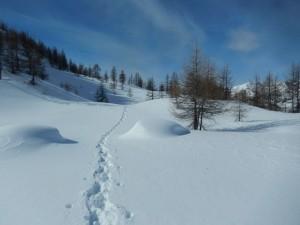 Salendo al Col Cheneil da Cheneil - Foto di Gian Mario Navillod.