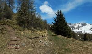 Inizio del sentiero 31 per la Punta Fontana Fredda - Foto di Gian Mario Navillod.