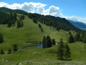 Opera di presa della centrale idroelettrica di Torgnon e pascoli alpini - Foto di Gian Mario Navillod.