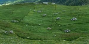 Pascoli dell'Alpe Chomioi/Tsomioy di Torgnon - Foto di Gian Mario Navillod.
