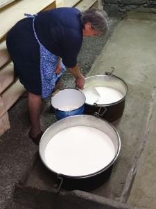 La tradizionale scrematura del latte nella latteria di Rovenaud (Valsavarenche) - Foto di Gian Mario Navillod.