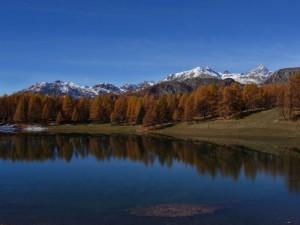Lago Lod di Chamois nel periodo della caduta delle foglie (fall foliage) - Foto di Gian Mario Navillod.