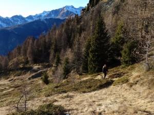 Primi turisti francesi sul sentiero ritrovato per il Col Cheneil - Foto di Gian Mario Navillod.