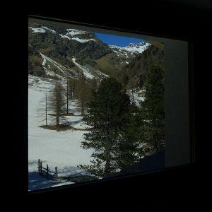 Il pino cembro visto dalla camera da letto del Rifugio Magià di Saint-Barthélemy - Foto di Gian Mario Navillod.