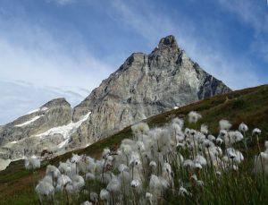Il Monte Cervino salendo al Colle del Teodulo dal Giomein - Foto di Gian Mario Navillod.