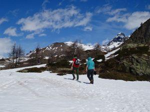 Salendo al Col Champlong - sulla destra il Grand Tournalin - Foto di Gian Mario Navillod.