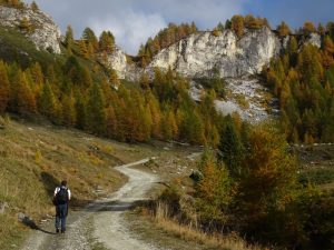La sterrata per il Col Champlong a Chamois - Foto di Gian Mario Navillod.