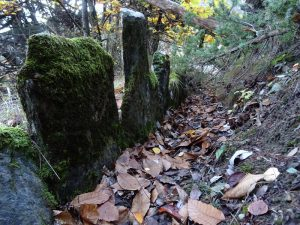 Alveo abbandonato del Ru Charnicloz (Tzarnicloz/Tzarniclo) di Fénis- Foto di Gian Mario Navillod.