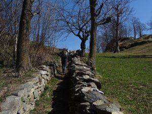 Sentiero Miocha - Arfey di Perloz (trail_visibility = excellent - sac_scale = mountain_hiking) - Foto di Gian Mario Navillod.