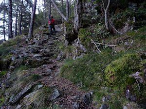 Sentiero per l'Alpe Valmeriana di Pontey - Foto di Gian Mario Navillod.