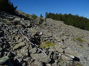 Pietraia e base di capanna salendo al Clapey Ghiabou di Pontey - Foto di Gian Mario Navillod.