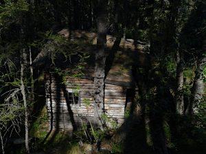 Capanna nel bosco sul sentiero del Clapey Ghiabou di Pontey - Foto di Gian Mario Navillod.