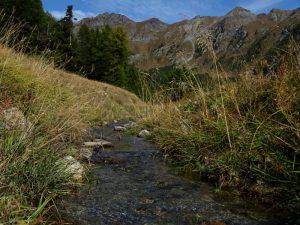 Ru Blanc di Nus in alveo naturale - Foto di Gian Mario Navillod.