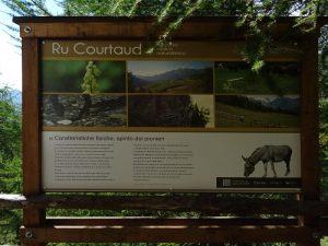 Uno dei pannelli didattici lungo il Ru Courtaud/Courtod - Foto di Gian Mario Navillod.