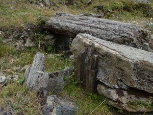Resti di paratoia in legno lungo il Ru d'Alp Vuillen - Foto di Gian Mario Navillod.