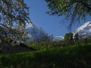 Il vallone delle Laures visto dal Ru du Seigneur di Brissogne - Foto di Gian Mario Navillod.