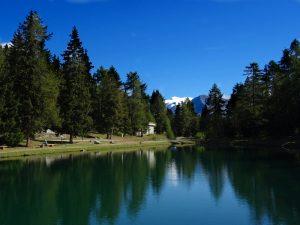 Lago Gorzà lungo il ru de Chavacourt/Verrayes - Foto di Gian Mario Navillod.