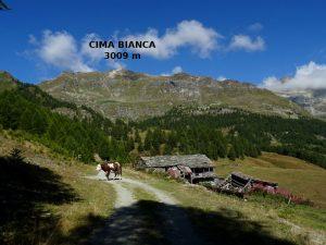 Alpe Troncheney e Cima Bianca dal ru de Chavacourt/Verrayes - Foto di Gian Mario Navillod.