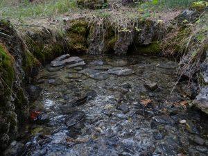 Le sorgenti del Ruet di Sarre - Foto di Gian Mario Navillod.