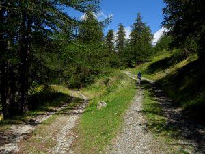 Bivio dell'Altavia 1 salendo verso il Ru Neuf d'Eternon - Foto di Gian Mario Navillod.