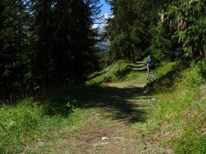 Sentiero lungo il Ru Neuf d'Eternon - Foto di Gian Mario Navillod.