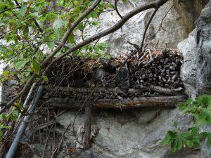 Una curiosa catasta di legna lungo il Ru des Gagneurs - Foto di Gian Mario Navillod.