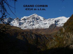 Il Grand Combin visto dal Ru du Mont - Foto di Gian Mario Navillod.