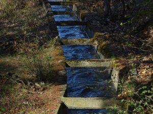 Alveo in cemento del Ru de l'Eau Sourde di Arvier - Foto di Gian Mario Navillod.