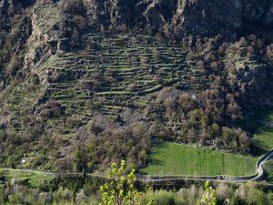 Terrazzamenti dell'Enfer d'Arvier visti dal Ru de l'Eau Sourde - Foto di Gian Mario Navillod.