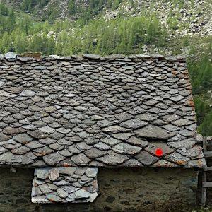 Losa sollevata con funzione di comignolo all'Alpe Dzanzeve di Torgnon - foto di Gian Mario Navillod.