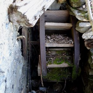 Ruota del mulino di Champlong - foto di Gian Mario Navillod.
