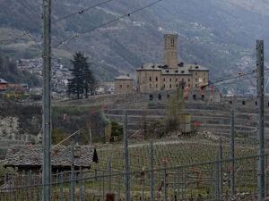 Castello di Sarre visto dai vigneti lungo il Ru Neuf di Aymavilles - Foto di Gian Mario Navillod.