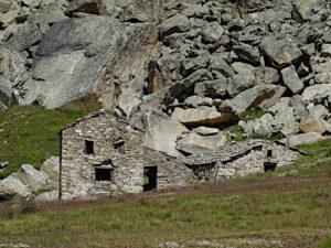 Alpe Grand Collet nel pianoro del Nivolet - Foto di Gian Mario Navillod.