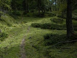 Scendendo dello Zerbion: il sentiero dietro l'Alpe Francou - foto di Gian Mario Navillod.